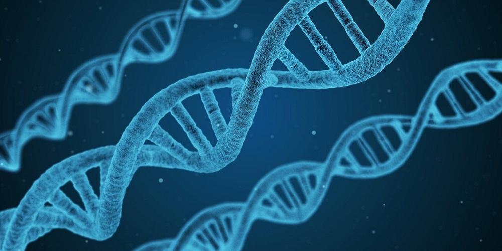 L'épigénétique pour prédire l'évolution des cancers du sein