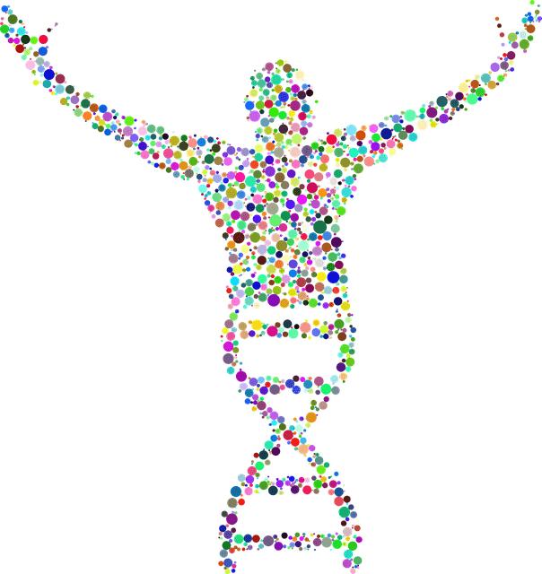 ADN et prédiction de l'évolution d'un cancer du sein